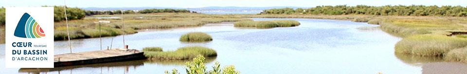 Déclaration de la taxe de séjour Office du tourisme du Coeur du Bassin d'Arcachon